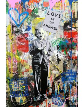 Einstein - Mr Brainwash